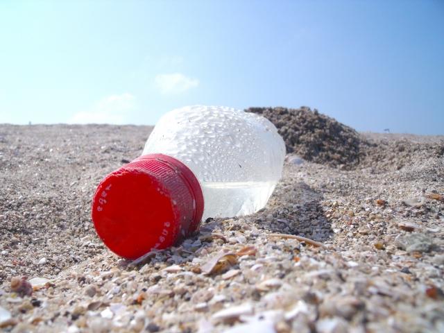 プラスチックごみの分別とビーチクリーン活動~稲毛海岸の砂浜をきれいに~のイメージ画像